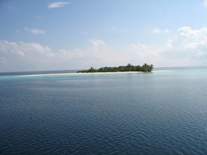 maldiv
